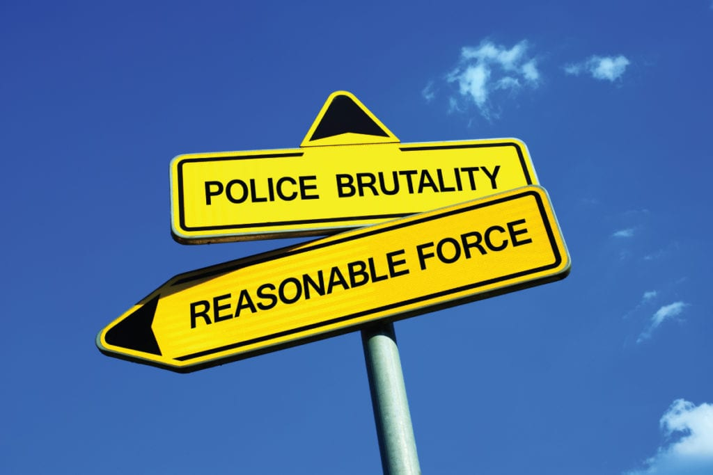 excessive force, police brutality